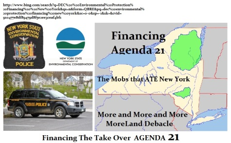 agenda24