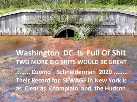 sewage-spill-St.-Pete-Large
